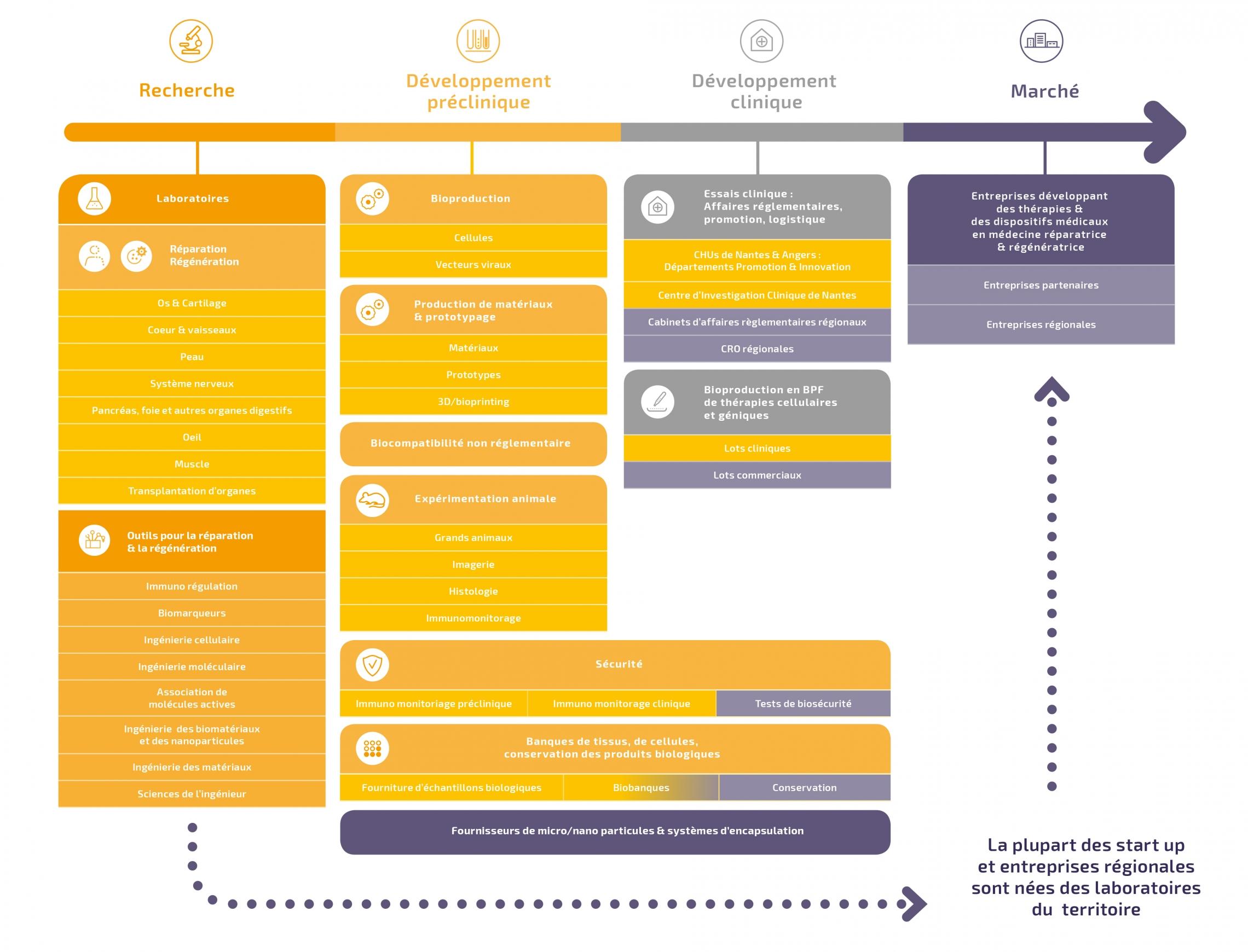 Panorama-des-competences